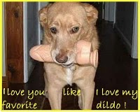 love you like my favorite dildo
