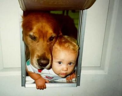 Baby and dog going thru pet door together