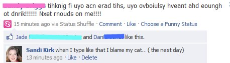 Cat is posting on my facebook to ruin me