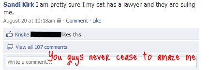 Funny Facebook threads awesome comments about cat hacker.