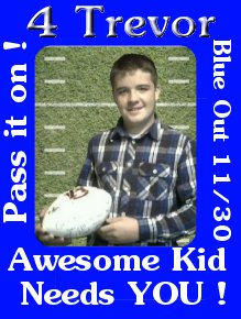 4Trevor blue out on November 30, 2010 to show your support