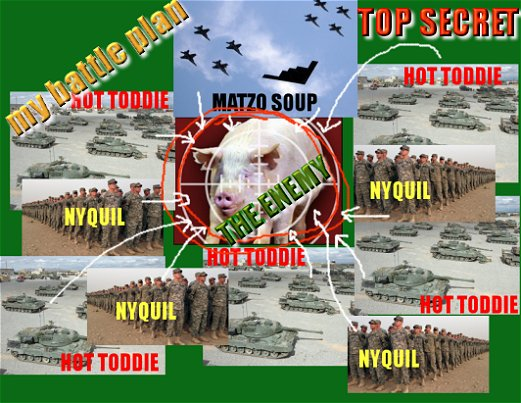 Top Secret Military Battle Plan