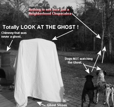 omg a ghost in mississippi with dogs watching the neighborhood chupacabra being peachy the prince